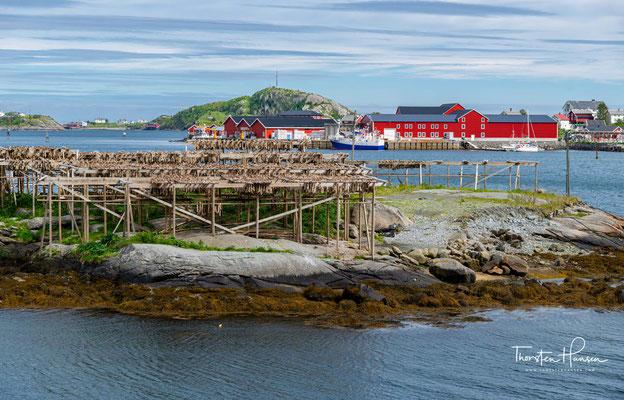 Traditionelle Holzhäuser der Fischer mit getrocknetem Kabeljau im Vordergrund