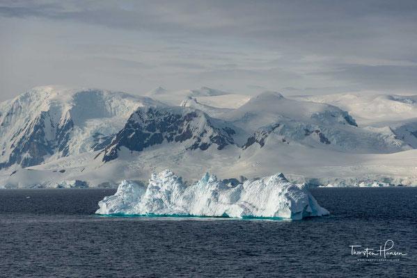 Entdeckt wurde sie bei der Belgica-Expedition (1897–1899) unter der Leitung des belgischen Polarforschers Adrien de Gerlache de Gomery.