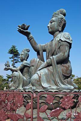 Die Augen, Lippen, die Haltung des Kopfes und der rechten zum Segnen erhobenen Hand, verleihen dem massiven Buddha Würde und eine bescheidene Persönlichkeit.