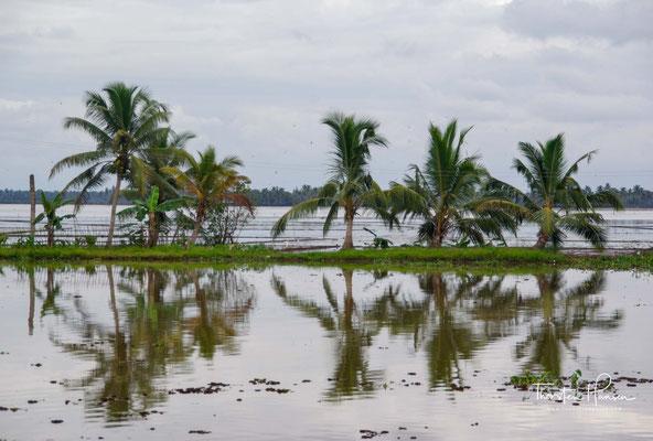 Schon seit Jahrhunderten dienen die Backwaters als Handels- und Verkehrswege.