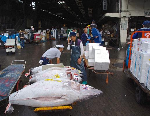 Tsukiji Fischmarkt in Tokio