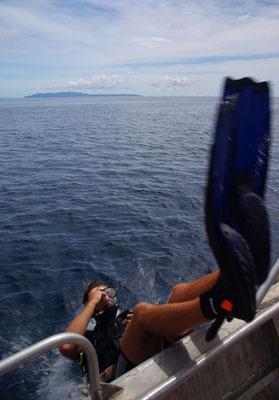 Rainbow Reef Dive