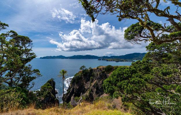 Die allerersten Siedler von Urupukapuka, entfernte Vorfahren der modernen Maori, sind möglicherweise vor etwa 1000 Jahren hier angekommen.