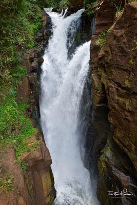 Die Iguazú-Wasserfälle bestehen aus 20 größeren sowie 255 kleineren Wasserfällen auf einer Ausdehnung von 2,7 Kilometern