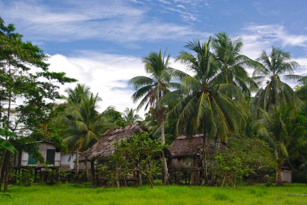 Das Dorf Aibom am Chambri See und Sepik River