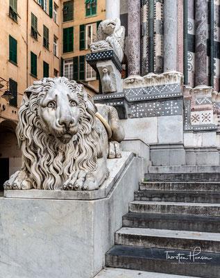 Über dem historischen Zentrum der Stadt Genua erheben sich die türkisfarbenen Dächer der Kuppel und des Glockenturms der Kathedrale San Lorenzo.