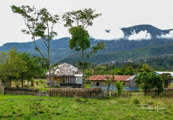 Die Dani sind ein indigenes Volk auf Neuguinea (Provinz Irian Jaya).