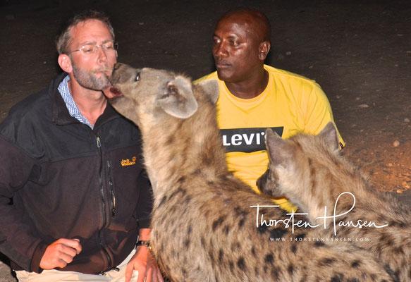 Hyänen Fütterung in Harar