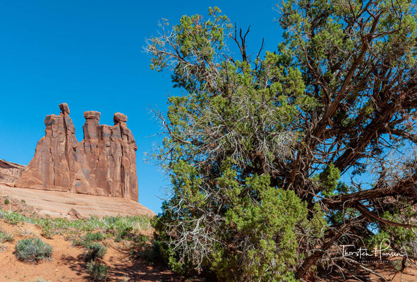 Klimatisch ist das Gebiet eine Wüste. Im Sommer können die Temperaturen 40 °C erreichen, während sie im Winter auf bis zu −10 °C sinken können.