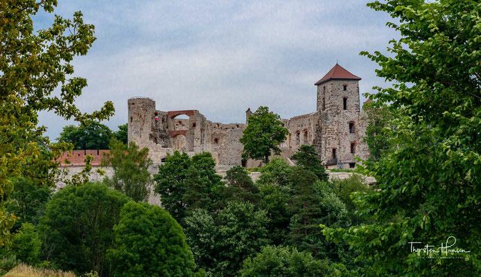 Die Burg Tenczyn ist eine Burgruine aus dem 14. Jahrhundert beim polnischen Dorf Rudno, etwa 24 km östlich von Krakau, in der Woiwodschaft Kleinpolen.  Die Burg steht auf Felsen, die Reste des Perm-Lavastroms sind.