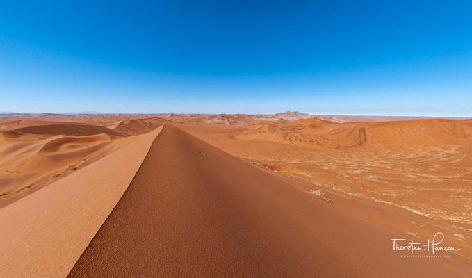 """Über dem südöstlichen Ende der Senke erhebt sich der Hauptkörper von """"Big Daddy"""", mit ca. 350 m eine der höchsten Sanddünen der Welt."""
