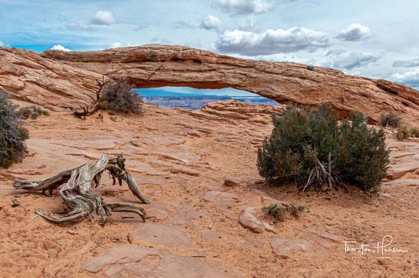 Der berühmte Mesa Arch - das Wahrzeichen Canyonland