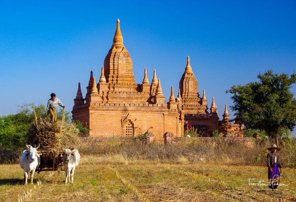 Der von Tempeln bestandene Bereich erstreckt sich über ca. 36 km² in einer versteppten Landschaft und bildet eine der größten archäologischen Stätten Südostasiens.