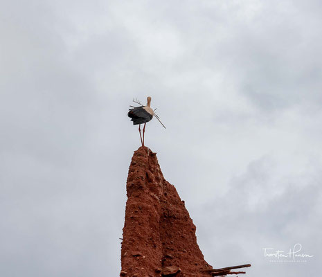 Seit dem Jahr der Unabhängigkeit Marokkos (1956) ist die Kasbah unbewohnt und verfällt allmählich. In den Jahren 2010/11 wurden zwar einige Instandhaltungsmaßnahmen durchgeführt – durch diese kann der Verfall des Bauwerks aber nur verzögert werden