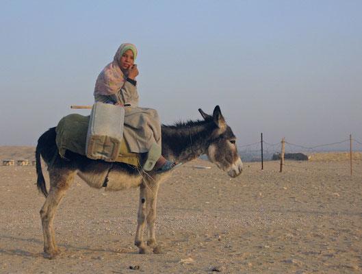Mädchen auf Esel in Sakkara