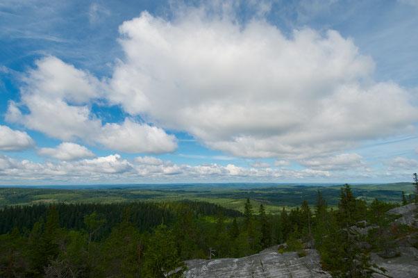 Der Koli [ˈkɔli] ist ein 347 m hoher Berg am Pielinen-See in der finnischen Region Nordkarelien. Er erhebt sich deutlich über die Umgebung. Die berühmte Aussicht von der Spitze des Koli über die umgebende Seenlandschaft gilt