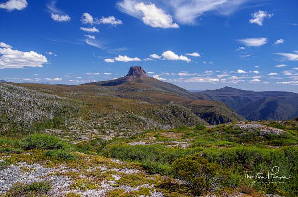 Es lassen sich vier Regionen unterschiedlicher Ausprägung unterscheiden: Die Cradle-Mountain-Region mit Mooren, Schluchten und Tälern
