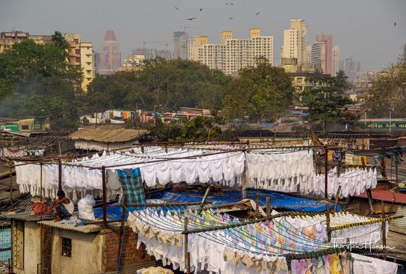 Die Wäscher schlafen mit bis zu 15 Personen in einer Wohnung und die Miete kostet ca. 5 Euro im Monat