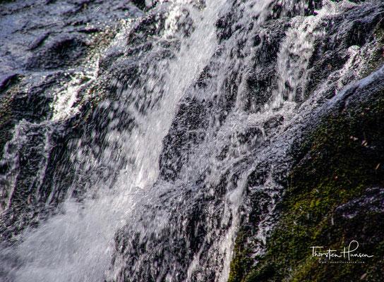 Idyllisch in einem Waldgebiet östlich von Queenstown gelegen, stürzt das Wasser des Nelson River hier aus 30 Metern Höhe in mehreren Stufen hinab.