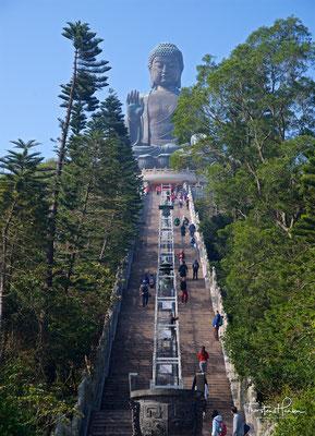 Sitzend, 34 Meter hoch und den Blick nach Norden gen China gerichtet, zieht der majestätische bronzene Buddha Pilger aus ganz Asien an.