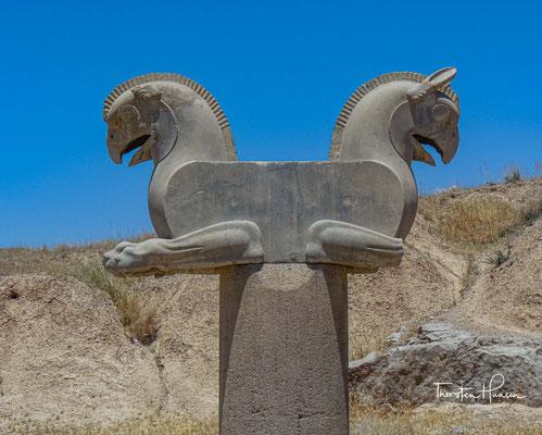 Ganz in der Nähe des Tores steht das einzige Greifenkapitell, das in Persepolis gefunden wurde – immer noch das Original.