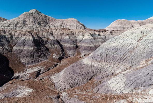 Das trockene Wüstengebiet am Rand des Colorado-Plateaus beeindruckt besonders durch die vielen Farben, die diese Landschaft zeigt.