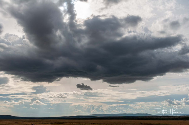 Landschaft der Masai Mara
