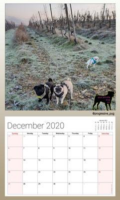 progressive-pug 2020 calendar - december
