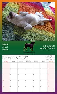 progressive-pug 2020 calendar - february