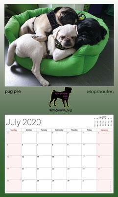 progressive-pug 2020 calendar - july