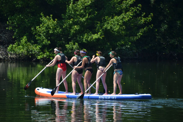 Giant stand-up paddle