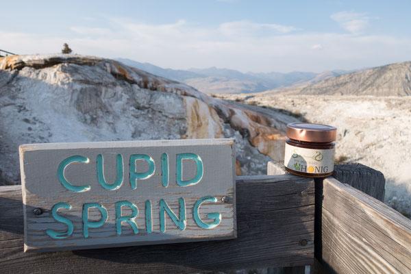 Cupid Spring im Yellowstone Nationalpark