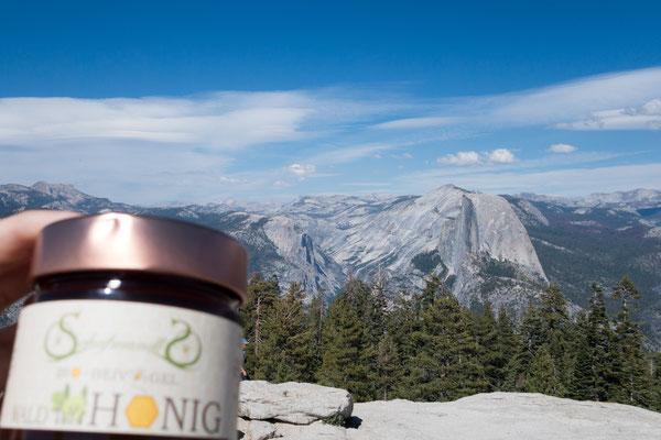 Yosemite Nationalpark mit Blick auf den Half Dome