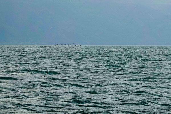 近くにあるガリラヤ湖。
