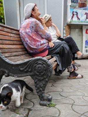 シナゴーグ前で老婆がお喋り中、ユダヤ人も多く住んでいる