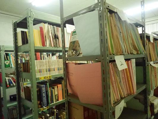 整理された本棚の様子