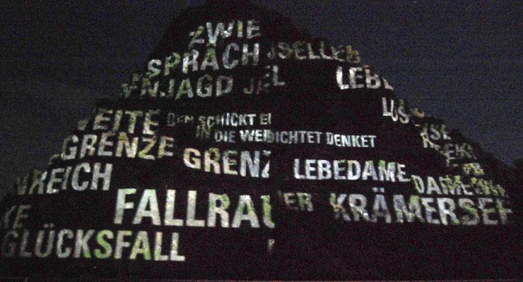 Rheinpartie 2009, mit Laser beschrifteter Felsen