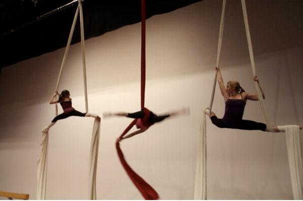 BTV Basel Kunstturnerinnen - Show Boden-Balken-Vertikaltuch  2010 (Quelle www.btv-basel.ch)