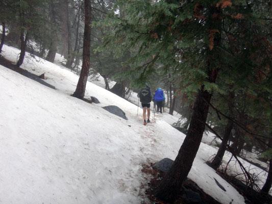 les premières neiges sérieuses sur le Mt San Bernadino