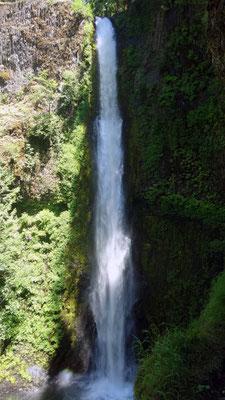 La cascade d'EagleCreek et le chemin derrière