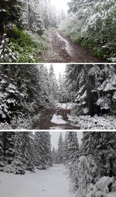 13h,  14h,  15h: le neige revients!