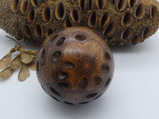 Kugel aus einem Banksiazapfen