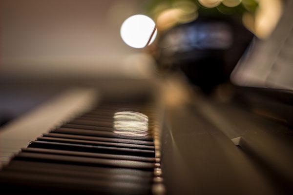 Keys Yamaha P-35. Foto: Leon Ehmke