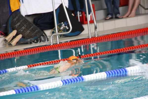 Sachi schwimmt