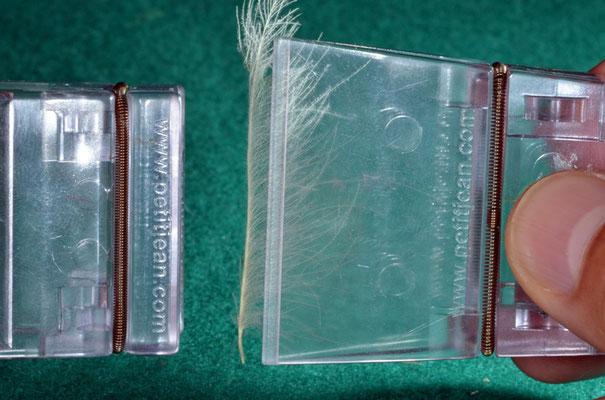 si inserisce la piuma di CDC nell'apposito strumento e si rendono verticali le fibre rispetto al calamo. Con l'apposita pinza, si prelevano le fibre