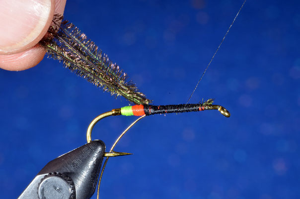 Si sceglie un ciuffetto di pavone di adeguata densità e si fissa lo stesso a ridosso del butt, avendo cura di posizionare il filo di montaggio esattamente a ridosso della base del ciuffo