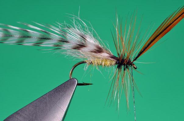 9. Avvolgere alcune spire di gallo marrone