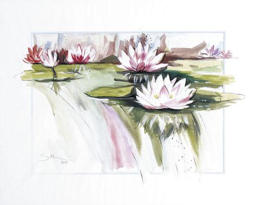 Seerosen, 50 x 40 cm, Aquarelle