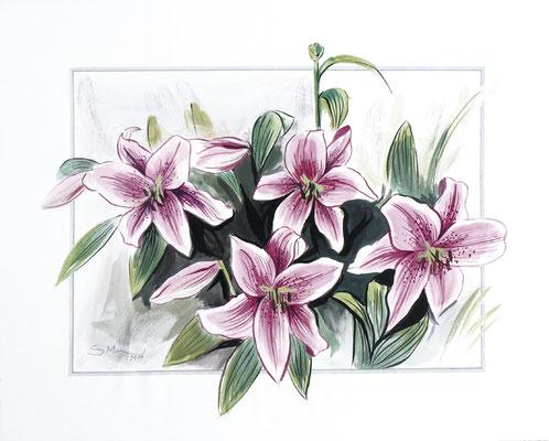 Lilien, 50 x 40 cm, Aquarelle