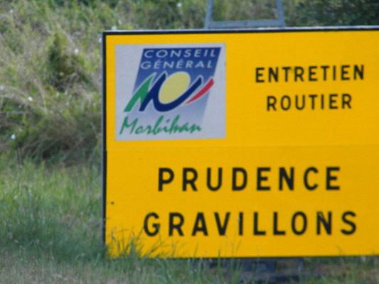 Les Foulées Melrandaises (Melrand - dép56 - 10km - Ven09/08/2013)